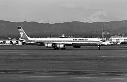 A-330さんが、横田基地で撮影したトランスアメリカ・エアラインズ DC-8-73CFの航空フォト(飛行機 写真・画像)
