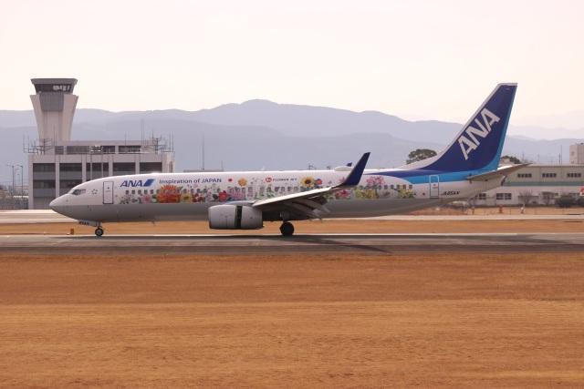 スパコルさんが、熊本空港で撮影した全日空 737-881の航空フォト(飛行機 写真・画像)