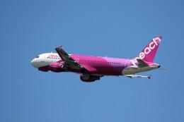もぐ3さんが、新千歳空港で撮影したピーチ A320-214の航空フォト(飛行機 写真・画像)