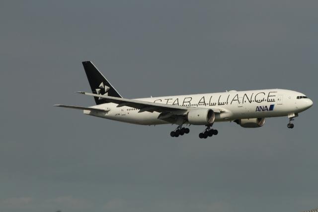 G-BNLYさんが、羽田空港で撮影した全日空 777-281の航空フォト(飛行機 写真・画像)