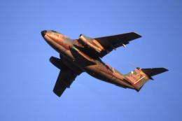 Gambardierさんが、伊丹空港で撮影した航空自衛隊 C-1の航空フォト(飛行機 写真・画像)