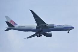 jutenLCFさんが、中部国際空港で撮影したチャイナエアライン 777-Fの航空フォト(飛行機 写真・画像)