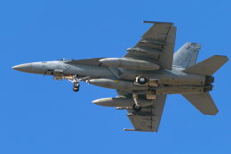 mameshibaさんが、厚木飛行場で撮影したアメリカ海軍 F/A-18E Super Hornetの航空フォト(飛行機 写真・画像)