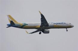 jutenLCFさんが、中部国際空港で撮影したセブパシフィック航空 A321-271NXの航空フォト(飛行機 写真・画像)