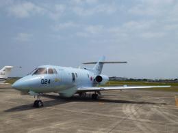 masahiさんが、静浜飛行場で撮影した航空自衛隊 U-125A(Hawker 800)の航空フォト(飛行機 写真・画像)