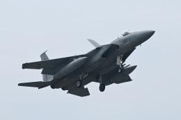 masahiさんが、静浜飛行場で撮影した航空自衛隊 F-15J Eagleの航空フォト(飛行機 写真・画像)