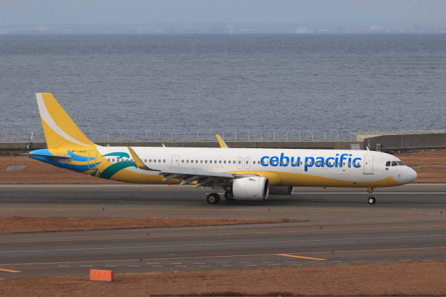 わんだーさんが、中部国際空港で撮影したセブパシフィック航空 A321-271NXの航空フォト(飛行機 写真・画像)