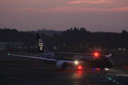 inyoさんが、成田国際空港で撮影したニュージーランド航空 787-9の航空フォト(飛行機 写真・画像)