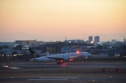 hirokongさんが、伊丹空港で撮影した全日空 777-281の航空フォト(飛行機 写真・画像)