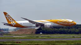FlyingMonkeyさんが、成田国際空港で撮影したスクート (〜2017) 787-9の航空フォト(飛行機 写真・画像)