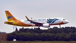 FlyingMonkeyさんが、成田国際空港で撮影したセブパシフィック航空 A320-214の航空フォト(飛行機 写真・画像)