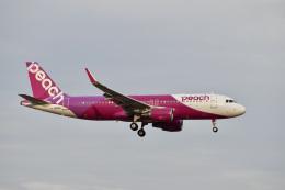 飛行機ゆうちゃんさんが、成田国際空港で撮影したバニラエア A320-214の航空フォト(飛行機 写真・画像)