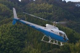 ラムさんが、静岡ヘリポートで撮影した東邦航空 AS350B Ecureuilの航空フォト(飛行機 写真・画像)