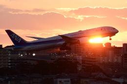 TOPAZ102さんが、伊丹空港で撮影した全日空 787-9の航空フォト(飛行機 写真・画像)