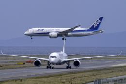 K.Sさんが、那覇空港で撮影した日本航空 A350-941の航空フォト(飛行機 写真・画像)