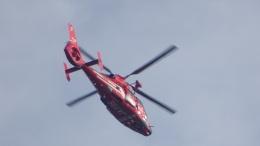 IOPさんが、茅ケ崎で撮影した東京消防庁航空隊 AS365N3 Dauphin 2の航空フォト(飛行機 写真・画像)