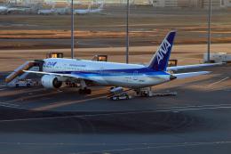 CL&CLさんが、羽田空港で撮影した全日空 787-9の航空フォト(飛行機 写真・画像)