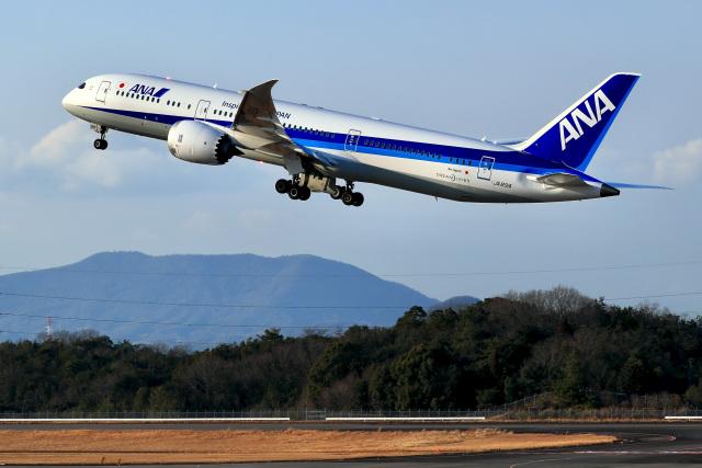 くれないさんが、高松空港で撮影した全日空 787-9の航空フォト(飛行機 写真・画像)