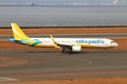 なごやんさんが、中部国際空港で撮影したセブパシフィック航空 A321-271NXの航空フォト(飛行機 写真・画像)