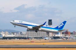 Astechnoさんが、伊丹空港で撮影した全日空 737-881の航空フォト(飛行機 写真・画像)