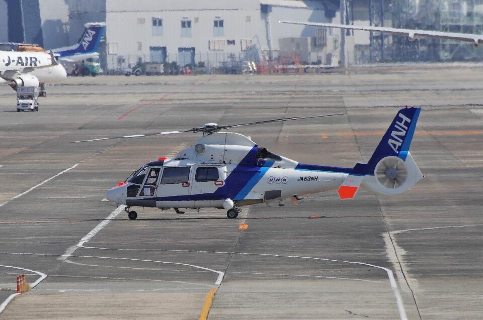 mild lifeさんのオールニッポンヘリコプター Aerospatiale SA365/AS365/565 Dauphin 2 (JA63NH) 航空フォト