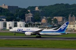 h_wajyaさんが、福岡空港で撮影した全日空 787-8 Dreamlinerの航空フォト(飛行機 写真・画像)