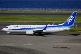 ▲®さんが、羽田空港で撮影した全日空 737-881の航空フォト(飛行機 写真・画像)
