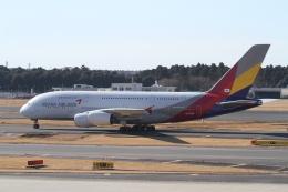 プルシアンブルーさんが、成田国際空港で撮影したアシアナ航空 A380-841の航空フォト(飛行機 写真・画像)