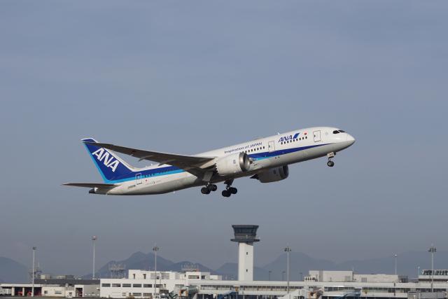 神宮寺ももさんが、高松空港で撮影した全日空 787-8 Dreamlinerの航空フォト(飛行機 写真・画像)