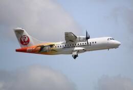 ジャガイモさんが、伊丹空港で撮影した日本エアコミューター ATR-42-600の航空フォト(飛行機 写真・画像)