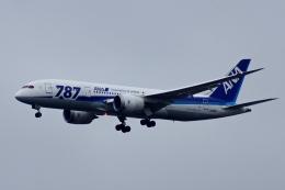 kaeru6006さんが、羽田空港で撮影した全日空 787-8 Dreamlinerの航空フォト(飛行機 写真・画像)