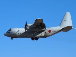 FT51ANさんが、厚木飛行場で撮影した海上自衛隊 C-130Rの航空フォト(飛行機 写真・画像)