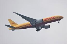 jutenLCFさんが、中部国際空港で撮影したカリッタ エア 777-Fの航空フォト(飛行機 写真・画像)