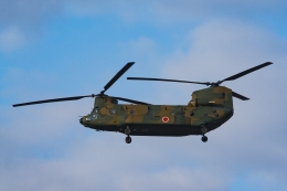 Mochi7D2さんが、岐阜基地で撮影した陸上自衛隊 CH-47JAの航空フォト(飛行機 写真・画像)