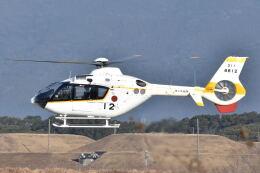 ワイエスさんが、鹿屋航空基地で撮影した海上自衛隊 TH-135の航空フォト(飛行機 写真・画像)