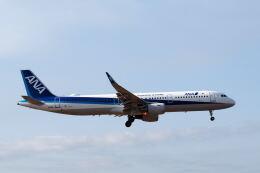ワイエスさんが、鹿児島空港で撮影した全日空 A321-211の航空フォト(飛行機 写真・画像)