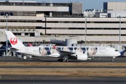 菊池 正人さんが、羽田空港で撮影した日本航空 A350-941の航空フォト(飛行機 写真・画像)