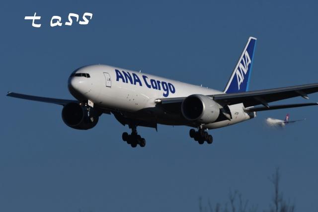 tassさんが、成田国際空港で撮影した全日空 777-F81の航空フォト(飛行機 写真・画像)