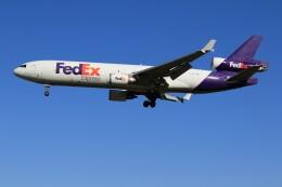 メンチカツさんが、成田国際空港で撮影したフェデックス・エクスプレス MD-11Fの航空フォト(飛行機 写真・画像)