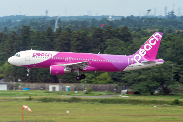 K.Sさんが、成田国際空港で撮影したピーチ A320-214の航空フォト(飛行機 写真・画像)