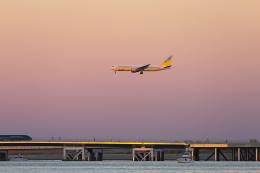 mameshibaさんが、羽田空港で撮影したAIR DO 767-33A/ERの航空フォト(飛行機 写真・画像)