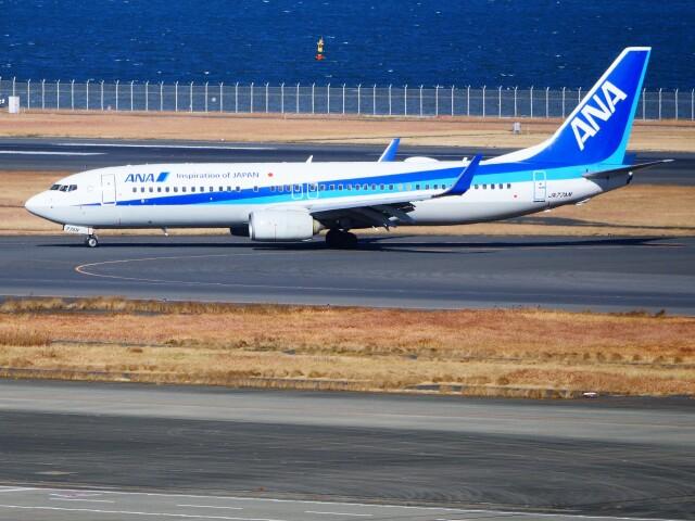 mich_stoneさんが、羽田空港で撮影した全日空 737-881の航空フォト(飛行機 写真・画像)