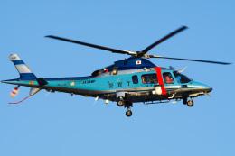さんごーさんが、東京ヘリポートで撮影した警視庁 A109E Powerの航空フォト(飛行機 写真・画像)