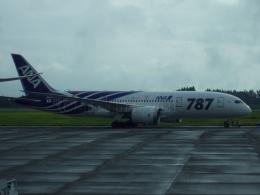 しまb747さんが、鹿児島空港で撮影した全日空 787-8 Dreamlinerの航空フォト(飛行機 写真・画像)