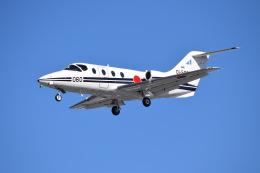 SYさんが、岐阜基地で撮影した航空自衛隊 T-400の航空フォト(飛行機 写真・画像)