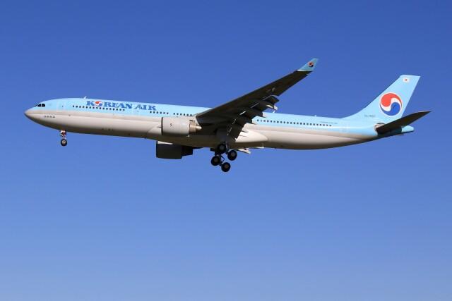 メンチカツさんが、成田国際空港で撮影した大韓航空 A330-323Xの航空フォト(飛行機 写真・画像)