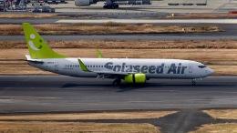 はやさんが、羽田空港で撮影したソラシド エア 737-86Nの航空フォト(飛行機 写真・画像)