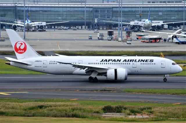 amagoさんが、羽田空港で撮影した日本航空 787-8 Dreamlinerの航空フォト(飛行機 写真・画像)