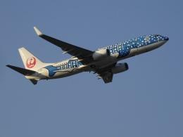 Black711Aさんが、福岡空港で撮影した日本トランスオーシャン航空 737-8Q3の航空フォト(飛行機 写真・画像)