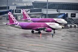 MSN/PFさんが、中部国際空港で撮影したピーチ A320-214の航空フォト(飛行機 写真・画像)
